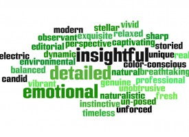 terms_style_wordle-950